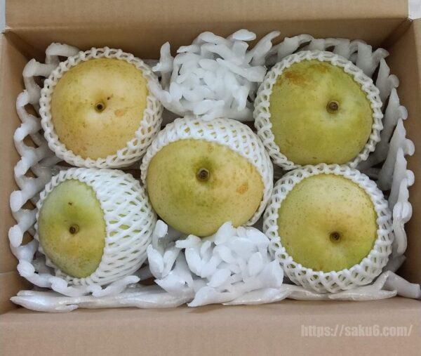 食べチョクフルーツセレクト 二十世紀梨